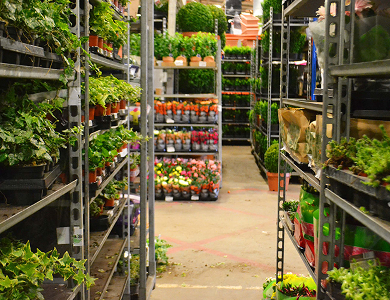 An Extraordinary Flower Market In The Heart Of Covent Garden
