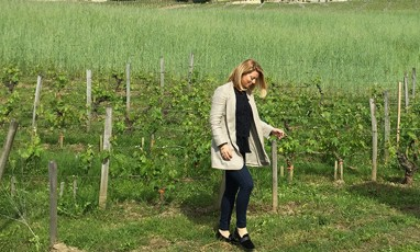 The 10 Commandments of Charlotte Calvet, The Wine-ista Girl!