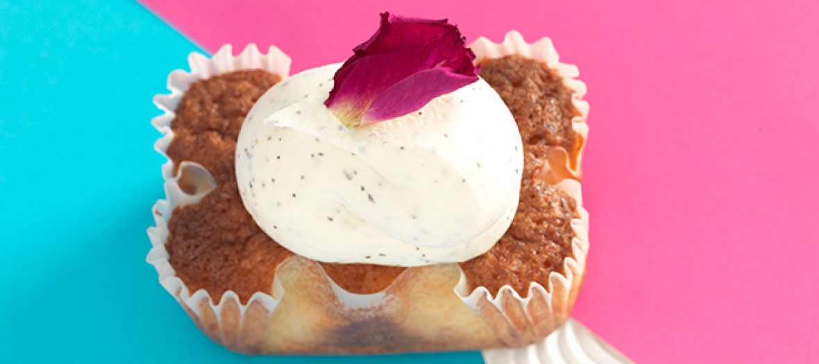 Icecream yummy cake