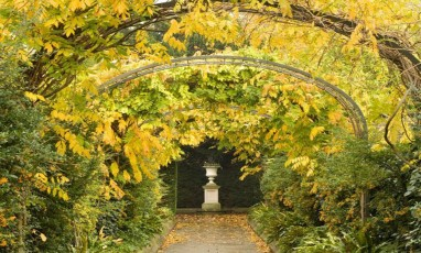 5 secret gardens in london
